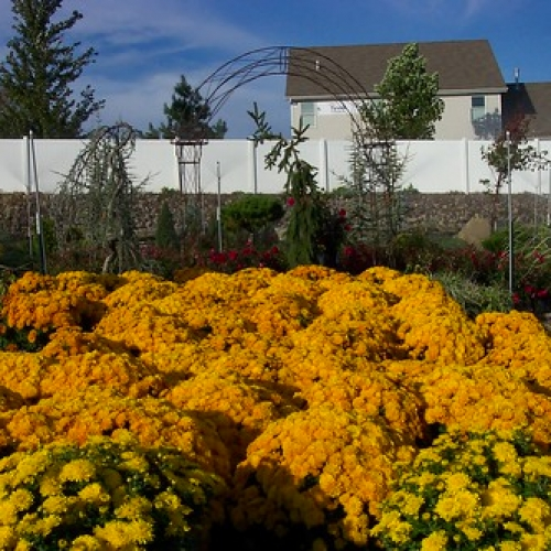 "Baxter Nursery • <a style=""font-size:0.8em;"" href=""http://www.flickr.com/photos/63612657@N05/5793632484/"" target=""_blank"">View on Flickr</a>"