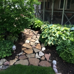 """Shade Garden • <a style=""""font-size:0.8em;"""" href=""""http://www.flickr.com/photos/63612657@N05/14226987030/"""" target=""""_blank"""">View on Flickr</a>"""