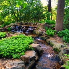 """Water Feature • <a style=""""font-size:0.8em;"""" href=""""http://www.flickr.com/photos/63612657@N05/14598203366/"""" target=""""_blank"""">View on Flickr</a>"""