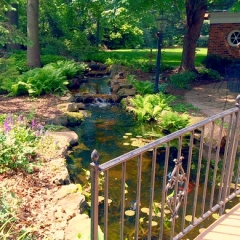 "Water Feature • <a style=""font-size:0.8em;"" href=""http://www.flickr.com/photos/63612657@N05/14434609169/"" target=""_blank"">View on Flickr</a>"