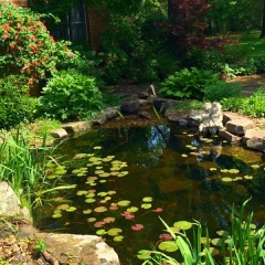 "Water Feature • <a style=""font-size:0.8em;"" href=""http://www.flickr.com/photos/63612657@N05/14434598028/"" target=""_blank"">View on Flickr</a>"