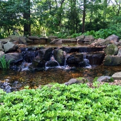 "Water Feature • <a style=""font-size:0.8em;"" href=""http://www.flickr.com/photos/63612657@N05/14621202735/"" target=""_blank"">View on Flickr</a>"