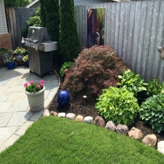 """Perennial Border • <a style=""""font-size:0.8em;"""" href=""""http://www.flickr.com/photos/63612657@N05/14226989150/"""" target=""""_blank"""">View on Flickr</a>"""