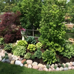 """Perennial Border • <a style=""""font-size:0.8em;"""" href=""""http://www.flickr.com/photos/63612657@N05/14227130437/"""" target=""""_blank"""">View on Flickr</a>"""