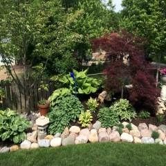 """Shade Garden • <a style=""""font-size:0.8em;"""" href=""""http://www.flickr.com/photos/63612657@N05/14412423504/"""" target=""""_blank"""">View on Flickr</a>"""
