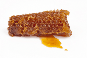 honeycomb produced by honeybees