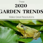 These 2020 Garden Trends Make Great Resolutions