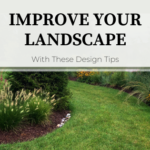 Grassy pathway through landscape beds filled with yellow flowers, grasses, and evergreens.  Improve Your Landscape With These Design Tips.
